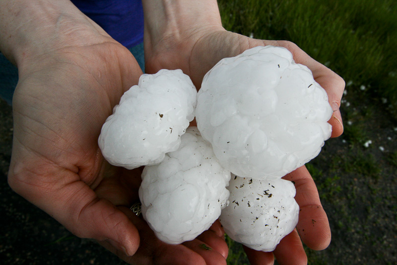 hailstones-bodyshoptotal